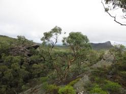 Australija_2012_17