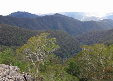 Australija_Augusta_2011_14