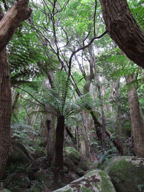 Australija_Augusta_2011_18