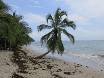 Costa_Rica_2014_3