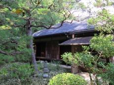 Japanas_Kalnos_Maijs_2015_1