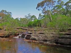 Parma Creek, Parma Creek Nature Reserve