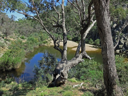 Bredbo River