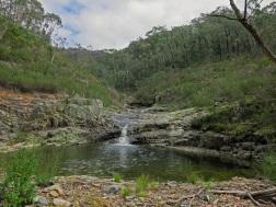 Mountain Creek, Brindabella National Park