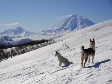 Kamchatka_2013_4