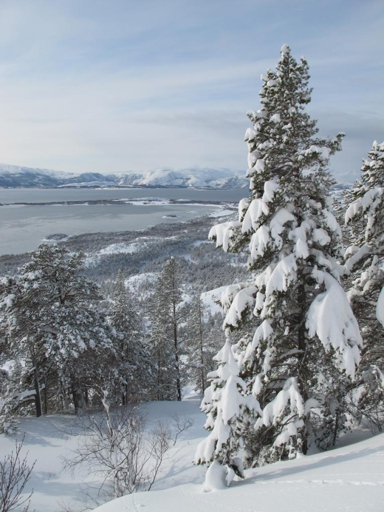 Norvegijas_Kalnos_2011_1