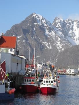 Norvegijas_Kalnos_2011_11