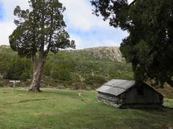 Tasmania_un_Australija_2014_3
