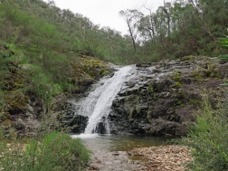 Tasmania_un_Australija_2014_36