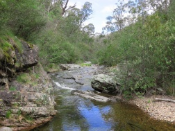 Tasmania_un_Australija_2014_38