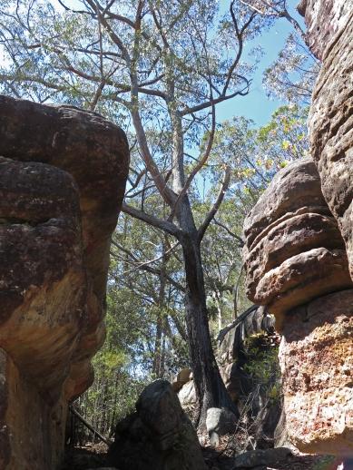 Rock corridors above Boolijong Creek, NSW
