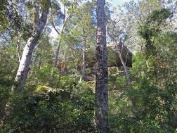 Hylands cliffs area, near Boolijong Creek, NSW