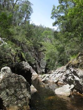 Sugarloaf creek, Monga National Park, NSW