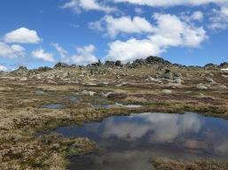 Tarns on the Ramshead Range, Kosciuszko National Park, NSW