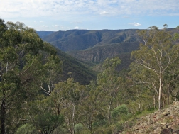 Above Becks Gully, Morton National Park, NSW