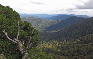 View from Careys Peak, Barrington Tops National Park, NSW