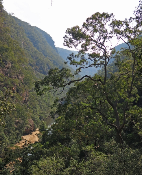 Colo River, Wollemi National Park, NSW
